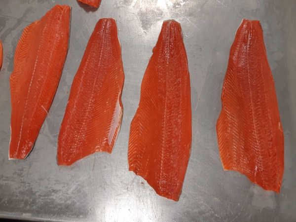 TradexLIVE - a Seafood Offers Portal for Seafood Buyers and